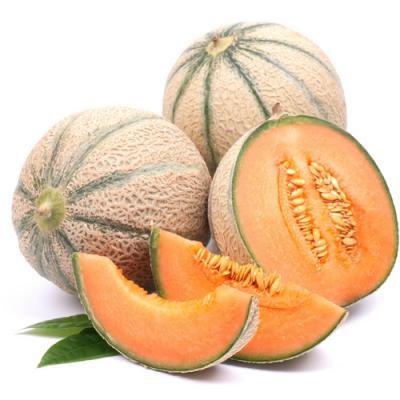 Melon en parfumerie