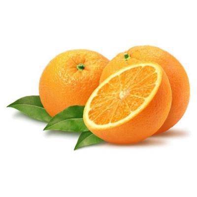 Orange en parfumerie